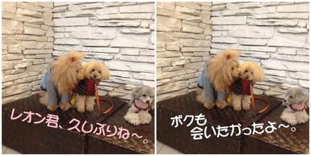 モアナ&レオン.jpg