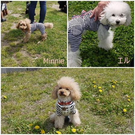 Minnie & Elle.jpg