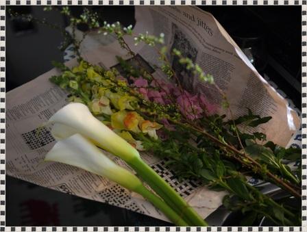 P1170461flower.JPG